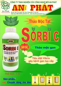 SORBIC K08