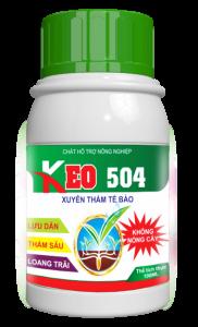 KEO 504
