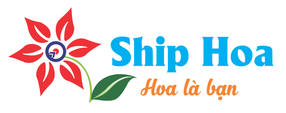ShipHoa.com - Shop Hoa Tươi Giá Tốt