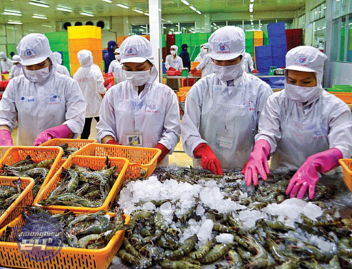 Xuất khẩu thủy sản thẳng tiến sang Anh nhờ UKVFTA