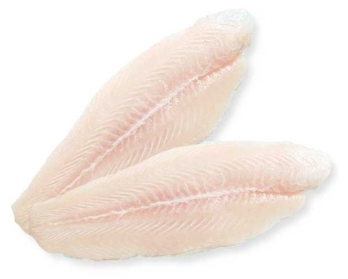 Pangasius Fillet Well trimmed