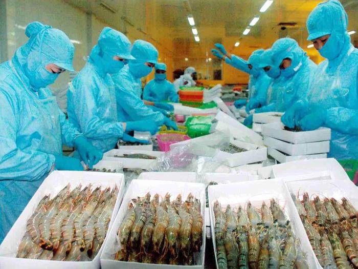 Thủ tướng muốn xuất khẩu tôm đạt 10 tỷ USD trước năm 2030